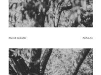 Sławek Jaskułke - Park.Live